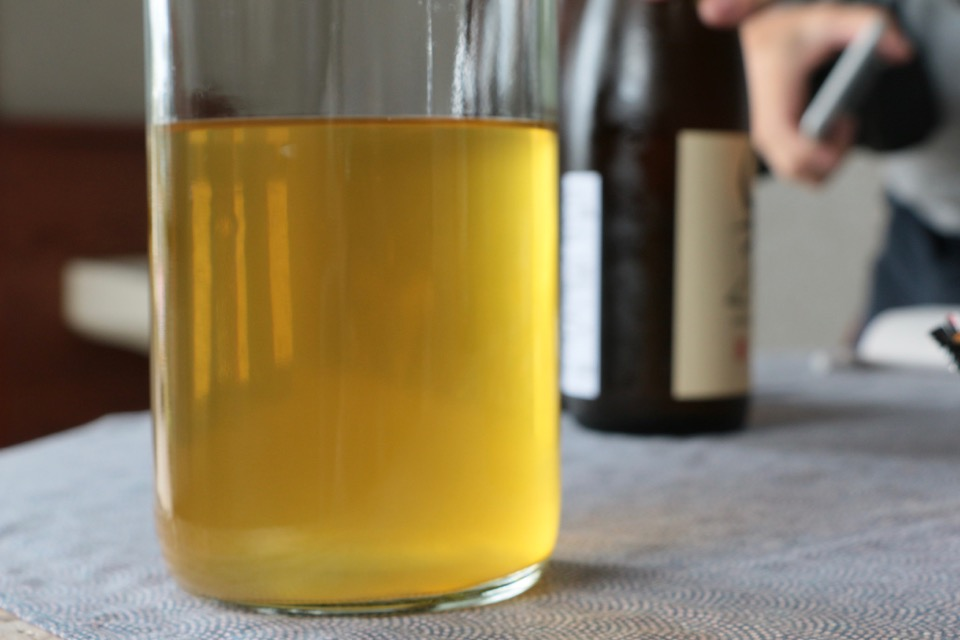 酒粕再発酵酒