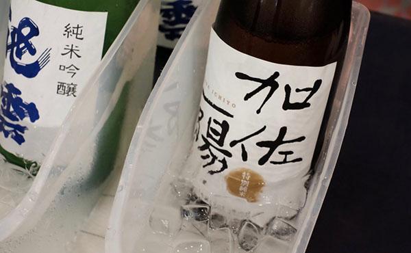 特別純米 加佐一陽 丹後地酒まつり2016