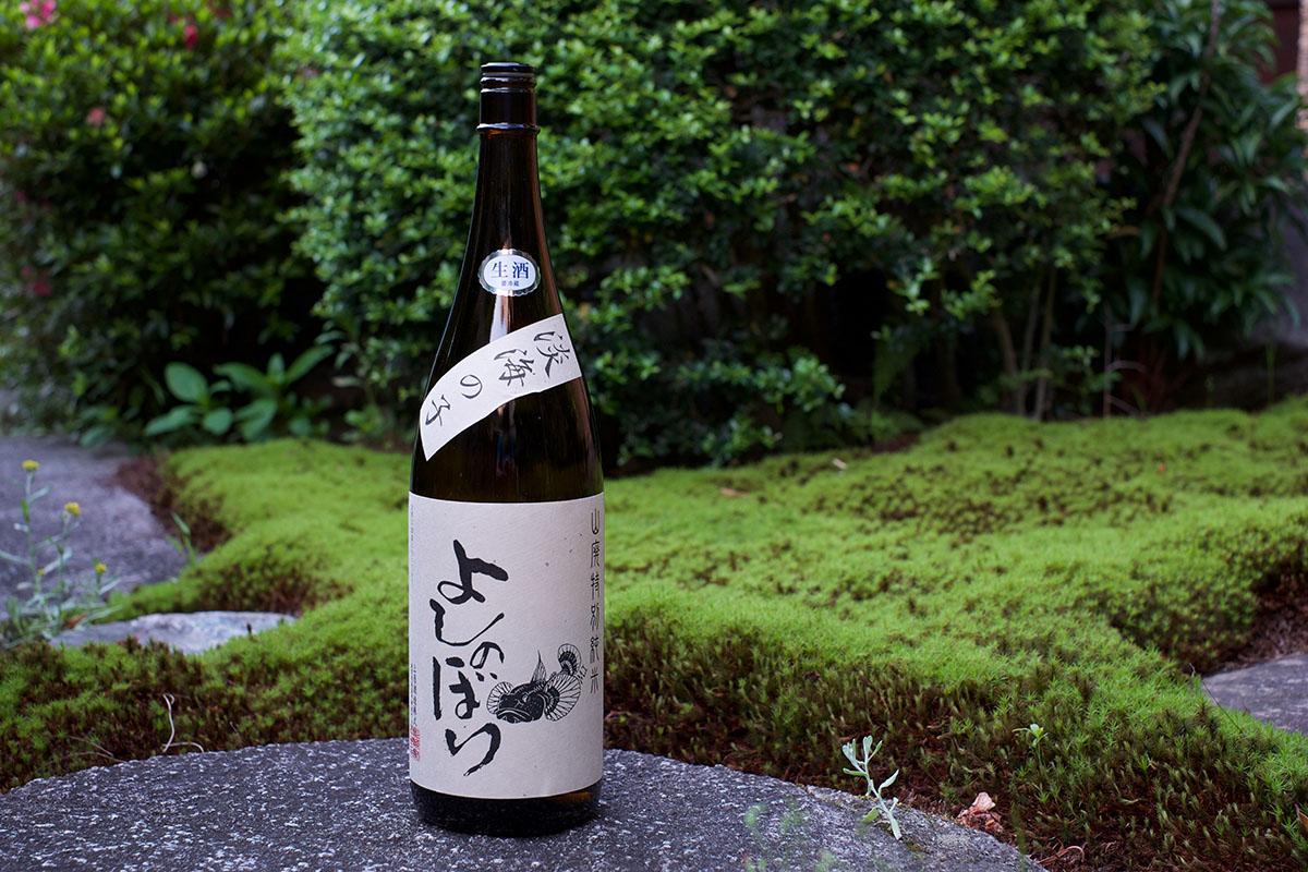 極私的不老泉らしさ「特別純米 生原酒 よしのぼり」日本酒テイスティングノート